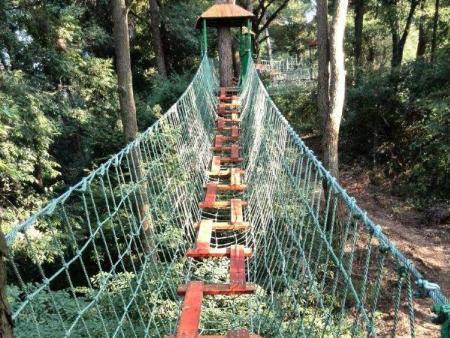 泰州丛林拓展厂家联系方式